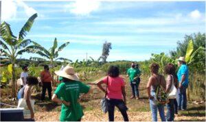 Imagem do Intercâmbio Local realizado em fevereiro de 2021: Visita à unidade de produção agroecológica Manu Manuela